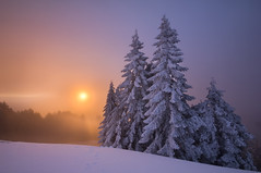 Mary's Sunbreak (Dan Sherman) Tags: snow fog oregon sunrise peak corvallisoregon corvallis maryspeak willamettevalley snowinmay oregonsnow willamettevalleysunrise