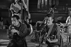 Gatti Mzzi @ Fortezza da Basso (Masinutoscana) Tags: italy music live tommaso concerto da musica indie pisani italiana novi basso fortezza gattimzzi francescobottai musicaindipendenteitaliana gattimezzi indieitalia