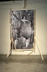 """Mariechen Danz, """"Herald"""" (AT1 Projects) Tags: herald mariechendanz 2009digitalphotographwithbirch 58x92photobyat1"""
