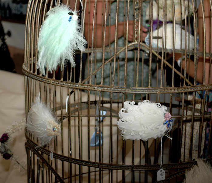 feathers_birdcage