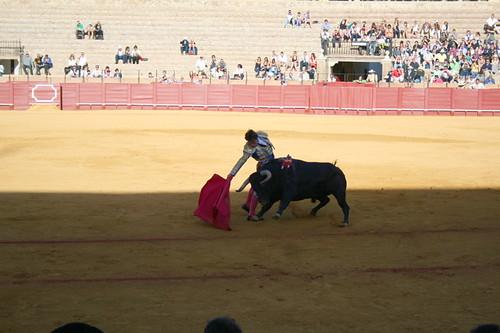 Dianas- Spain 2010 381