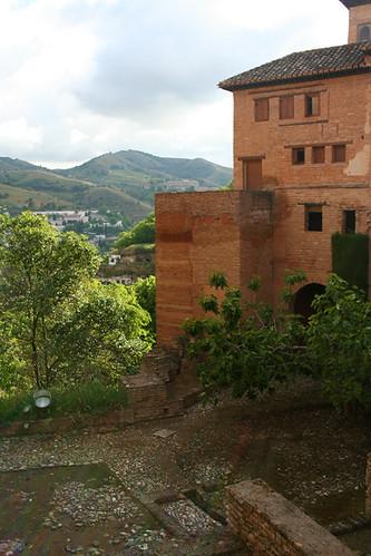 Dianas- Spain 2010 486