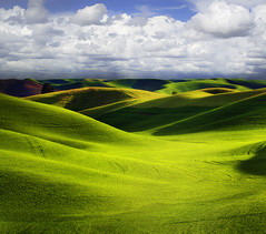 Storm A Brewing Over The Palouse (kevin mcneal) Tags: photo washington spring nw tours rollinghills colfax palouse easternwashington greatphotographers vibrantgreen bratanesque thepowerofnow