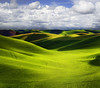 Storm A Brewing Over The Palouse (kevin mcneal) Tags: photo washington spring nw tours rollinghills colfax palouse easternwashington greatphotographers vibrantgreen bratanesque ☆thepowerofnow☆