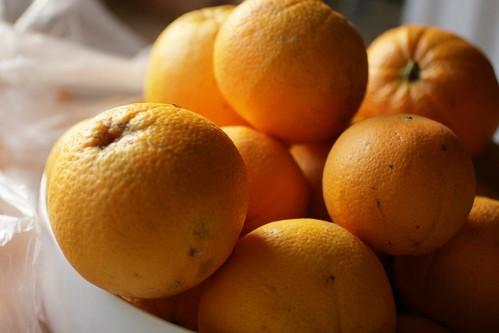 Day 168 - Oranges