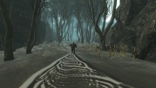 Fallout3 2010-06-19 11-16-18-29