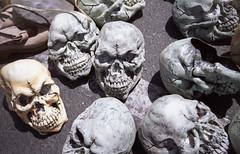 Tomorrow might not exist (QsySue) Tags: skulls concrete skull junk mask pavement masks 35mmfilm automatic pointandshoot orangecounty fleamarket huntingtonbeach yashicat4 carlzeisslens titleisadaxriggslyric goldenwestswapmeet