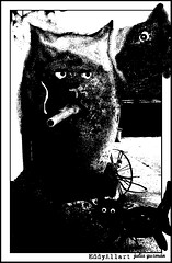 Dugatos (Eddy Allart) Tags: art illustration cat kat chat julia drawing cartoon fantasy gato katze dibujo poes illustratie spanje tekening eddyallart