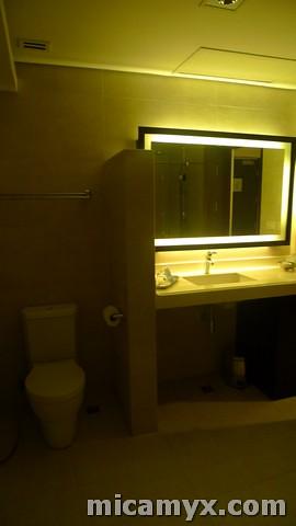 Bathroom Shot # 1