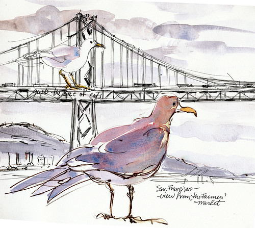 Golden Gate bridge and gulls big as cats