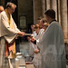 "Ordination of Priests 2017 • <a style=""font-size:0.8em;"" href=""http://www.flickr.com/photos/23896953@N07/35285441250/"" target=""_blank"">View on Flickr</a>"