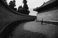 The Photographer (sunnywinds*) Tags: 北京 中國 中国 天坛 天壇 photographer heaven platform beijing china leica leicaimages monochrom monochrome blackandwhite travel destination summiluxm11428mmasph