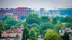 2017.07.02 DC People and Places, Washington, DC USA 7264