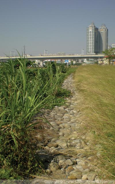 筏子溪-0003