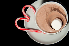 Hot Chocolate Splash (Ryan Taylor Photography) Tags: hotchocolate candycane marshmellow tpc speedphotography tpcu5 tpcu5l2 tpcu5l1
