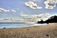桂浜 / Katsura Beach