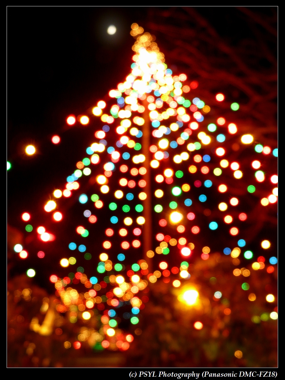 Christmas Lights and Moon Light (Bokeh Version)