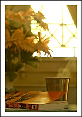 .Welcome..2010. (.krish.Tipirneni.) Tags: flowers light red sun sunlight india hot green home window glass yellow table 50mm book nikon afternoon tea steel curtain plastic ap hyderabad greentea gin vapour hpc windowlight ori thealchemist yellowish andhrapradesh steelglass d80 notfiltercoffee