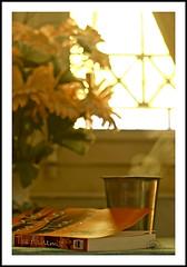 .Welcome..2010. (.krish.Tipirneni.) Tags: flowers light red sun sunlight india hot green home window glass yellow table 50mm book nikon afternoon tea steel curtain plastic ap hyderabad greentea gin vapour hpc windowlight ori thealchemist yellowish andhrapradesh steelglass d80 notfiltercoffee