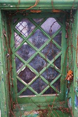 Windows (Tim Loesch) Tags: baldpate