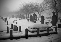 Grave Yard (pixiepic's) Tags: trees winter mist snow cemetery graveyard fog headstones oldham platinumheartaward