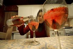 Strathy_Scotland_52 (jjay69) Tags: uk england flower scotland highlands wine britain cottage lodge croft alcohol sutherland pour edible sparkling chistmas fizz strathy northernscotland