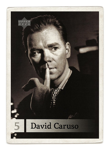 card 005 by the Maltese Falcon.