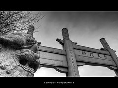 Lan Su Chinese Garden Portland Oregon - HDR B/W (David Gn Photography) Tags: city urban bw statue architecture oregon garden portland landscape downtown chinatown lion parks stonesculpture oldtown hdr fudog portlandclassicalchinesegarden canonpowershotsx1is lansuchinesegarden