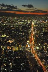 Tokyo 2009 - 六本木 - 森ビル(4)