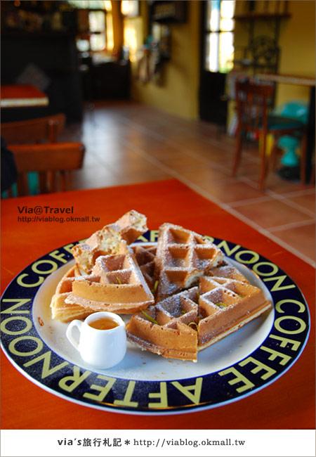 【魔法咖啡屋】Mofa Cafe~在南投國姓鄉來一杯魔法咖啡43
