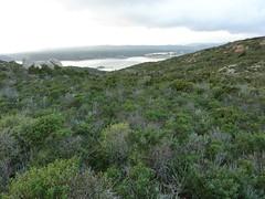Piste de descente depuis la tour de Santa Manza : vue de la baie et de Punta di a Nava