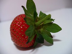 strawberry (greenolive*) Tags: strawberry yum organic vegiepatch homegrown