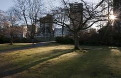 01 DSC_0057 - Landscape Pick 01