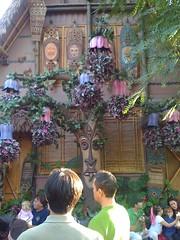 Disneyland Jan 2010  133