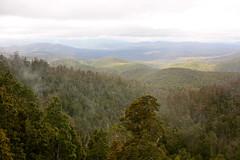 Waratah lookout, Hartz Mountains National Park - by Aschaf
