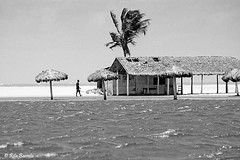 Lagoa do Banana (Rita Barreto) Tags: bw brasil blackwhite noiretblanc pb bn ceará pretoebranco nordeste 白黒 lagoadobanana caucaia schwarzundweis 黑色白色