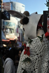 Tokyo 2009 - 原宿 - 散步隨手拍(3)