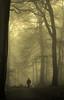 the woods today... (Svenslens) Tags: wood morning dog man fog forest birmingham woods path foogy abigfave platinumphoto anawesomeshot diamondclassphotographer flickrdiamond