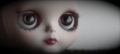Mi proyecto de Mini-yo