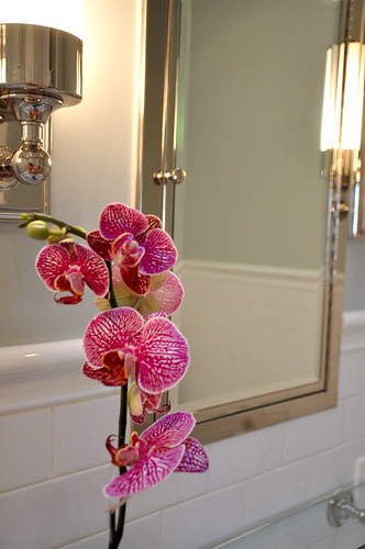 Pink Orchid from Ikea