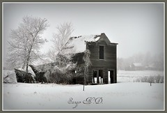 Sanger N.D. (Huleo-1) Tags: winter blackandwhite snow northdakota ghosttown sanger