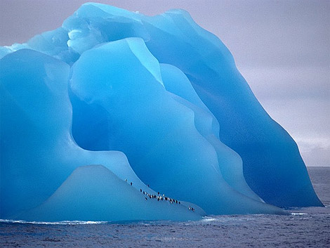 4363055491 63105d11fa o - Blue Ice....
