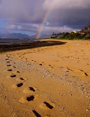 footprints (dmjames) Tags: beach hawaii rainbow sand tracks footprints kauai