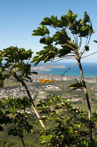 Scenic Hikes in Oahu, Hawaii