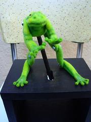 Frog Automaton  4