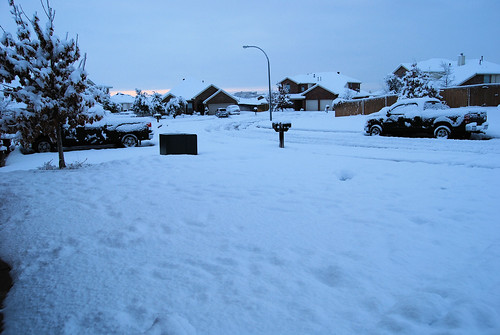 Front Yard and Street