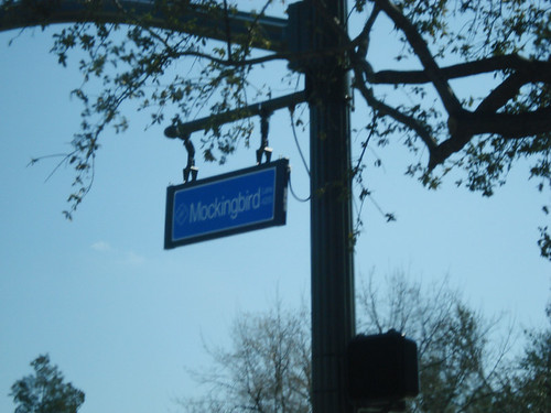 Mockingbird street