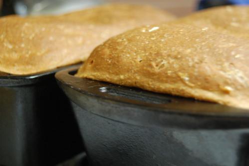 homemade bread (baked)
