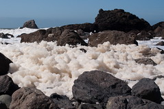 Foam in the wind Photo