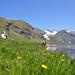 Randonnée pédestre dans le Val d'Allos